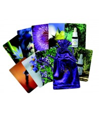 Saint Germain Flower Cards