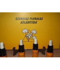 20 Flower Essences Kit 10 ml.