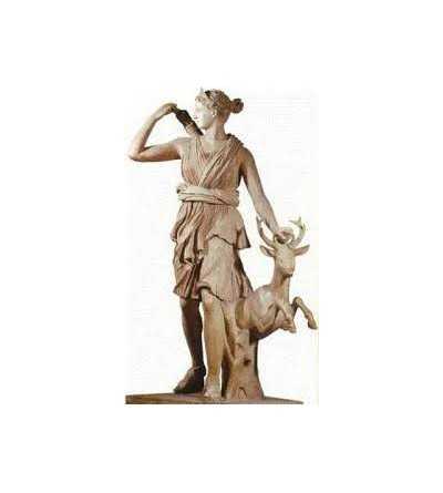Artemisa 12 ml.