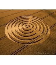 Wheat Circle nº 177