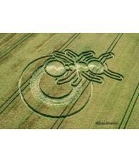 Wheat Circle nº 208