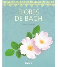 copy of La Bruja Verde