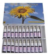 Kit Flores Silvestres...