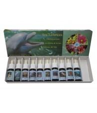 Sea Essence Kit
