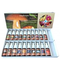 Mushroom Essences Kit
