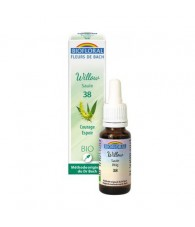 Willow 20 ml. Bio