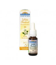 White Chestnut 20 ml. Bio