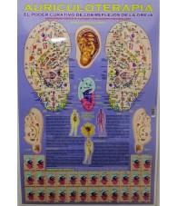 copy of Poster Flores de...