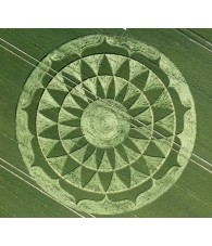 Wheat Circle nº 217