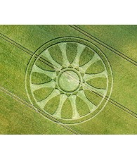Wheat Circle nº 218