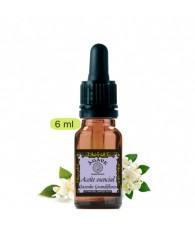 Jasmine Grandiflora 6 ml.