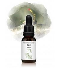 Hazel - Avellano 15 ml.