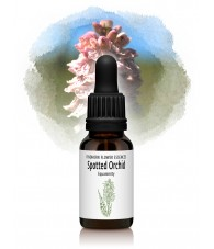 Spotted Orchid - 15 ml.