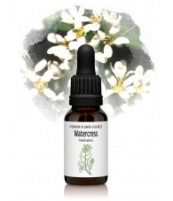 Watercress - 15 ml.