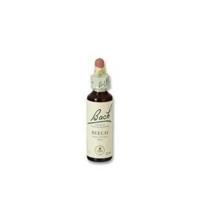 Beech 20 ml