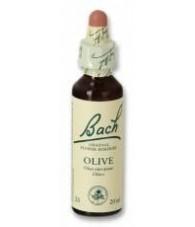 Olive 20 ml