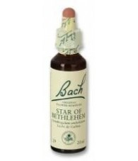 Star of Bethlehem 20 ml