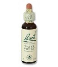 Water Violet 20 ml