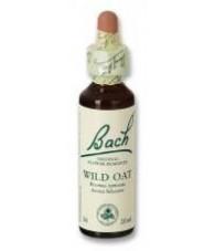Wild Oat 20 ml