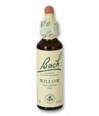 Willow 20 ml