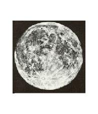Moon 15 ml.