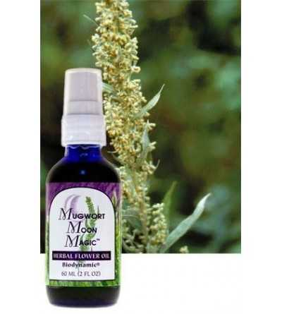 Aceite Mugwort 60 ml.