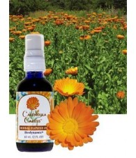 Calendula Oil 60 ml.