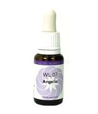 Angelic Essence 15 ml.