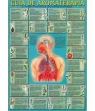Lámina Guia de Aromaterapia