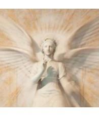 Angel Ariel 15 ml.