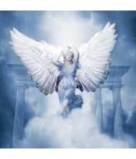 Angel Glemiah 15 ml.