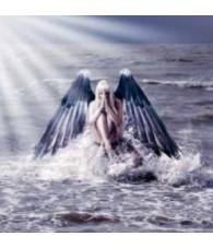 Angel Anauel 15 ml.
