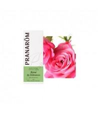 Rose 2 ml PR