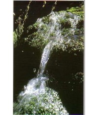 Rock Water 15 ml.