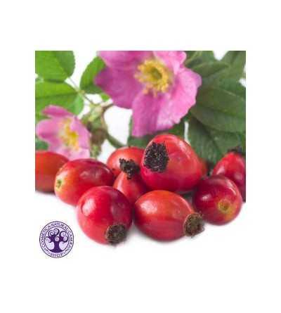 Exfoliante Rosa Mosqueta Bio 50 gr.