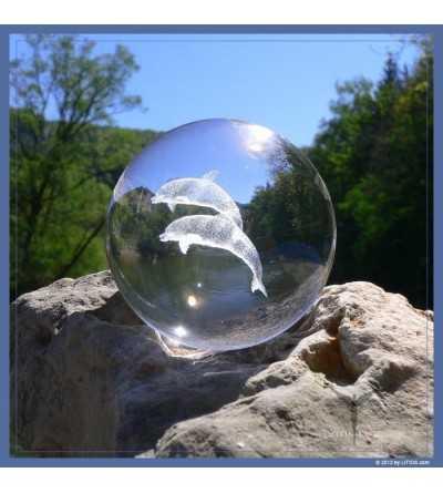 Esfera Delfin - Litios