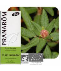 Labrador tea 5 ml Bio PR