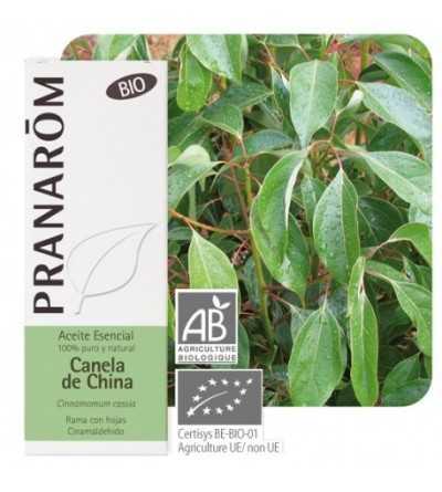 Chinese Cinnamon Bio 10 ml. PR