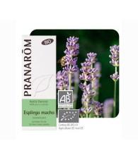 Lavender, spike Bio 10 ml. PR
