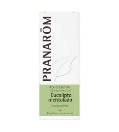 Eucaliptus Mentolado 10 ml PR