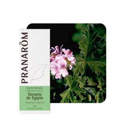 Geranium, egyptian 10 ml. PR