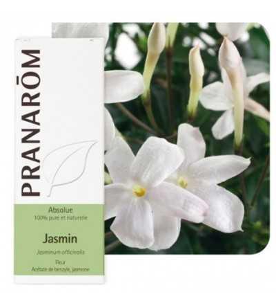 Jazmín Absoluto 5 ml PR