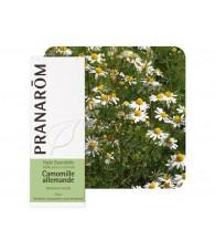 Chamomile, German 5 ml PR