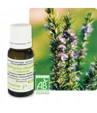 Rosemary, verbenone Bio 5 ml PR
