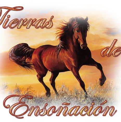 TIERRAS DE ENSOÑACION